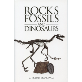 rocks-fossils-and-dinosaurs